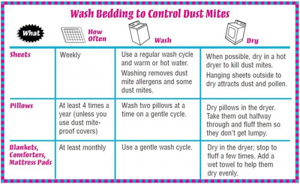 How To Get Rid Of Dust Mites In Bedroom How To Instructions