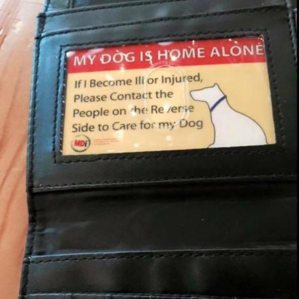 Pet Emergency Wallet Card 1