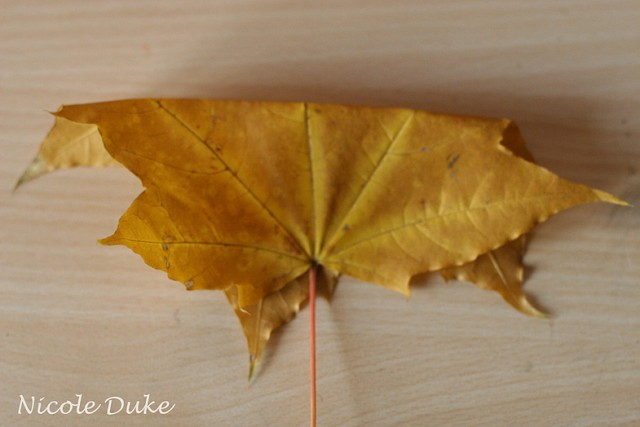 How To Make Maple Leaf Roses 1