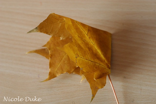 How To Make Maple Leaf Roses 2