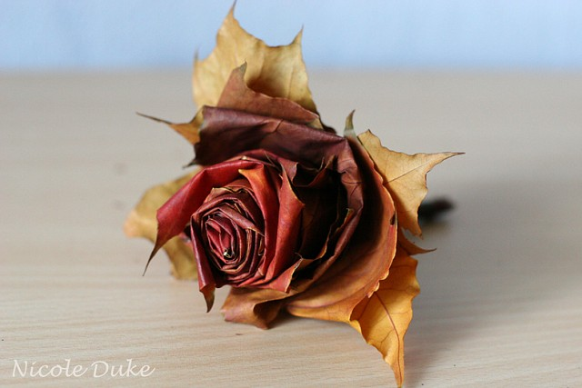 How To Make Maple Leaf Roses 8