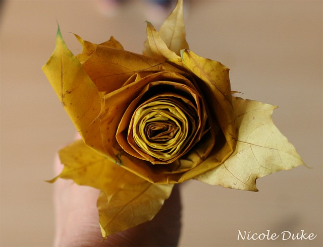 How To Make Maple Leaf Roses 9