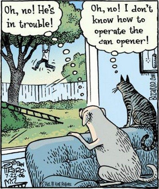 Trouble