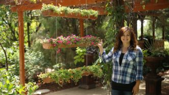 DIY Rain Gutter Vertical Vegetable Garden