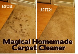Magical Homemade Carpet Cleaner