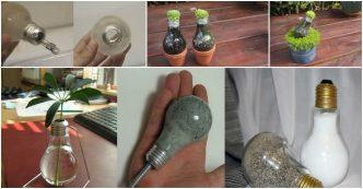 DIY Light Bulb Planter