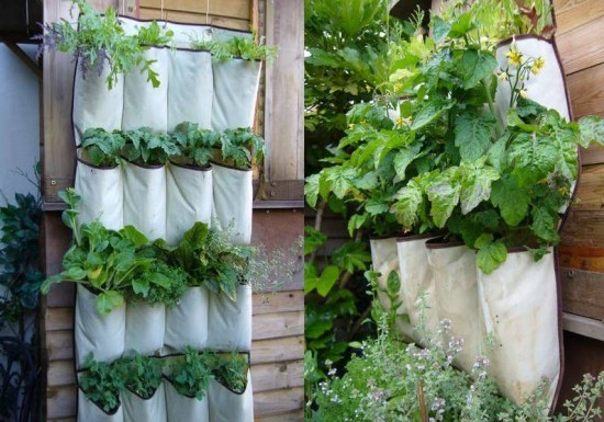How To Turn An Old Hanging Shoe Organizer Into A Herb Planter