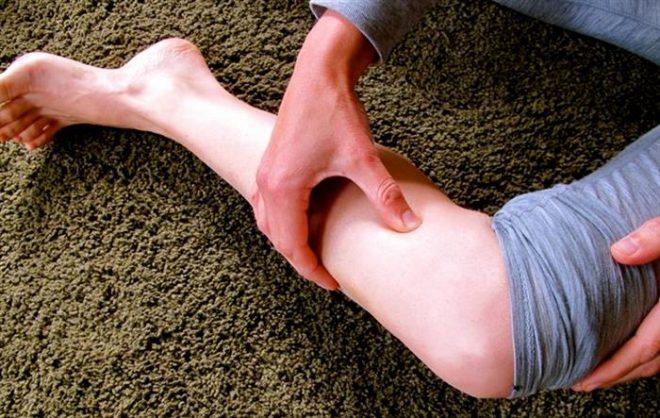 calves-for-stress