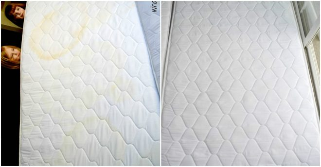How To Remove Pee Stain From A Mattress – Homemade Ideas