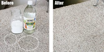 How To Get Rid Of Pet Stains On Carpet