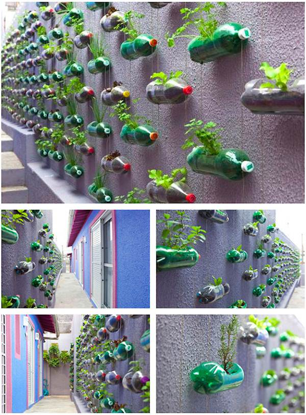 Plastic Bottle Vertical Garden Ideas 1