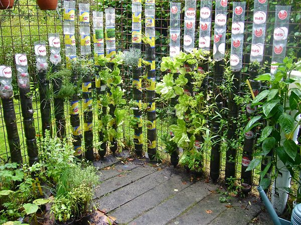 Plastic Bottle Vertical Garden Ideas 2
