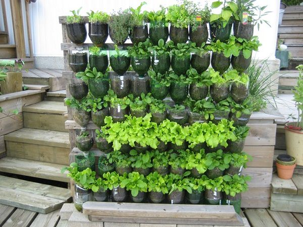 Plastic Bottle Vertical Garden Ideas 3