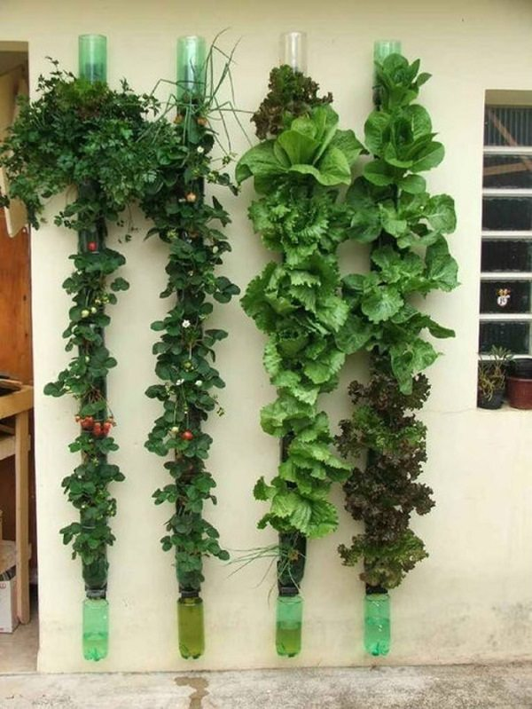 Plastic Bottle Vertical Garden Ideas 4