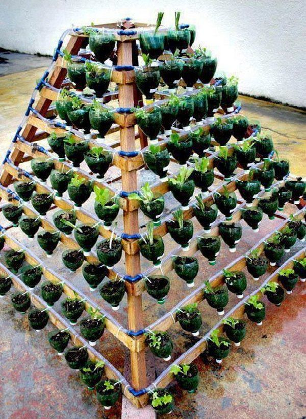 Plastic Bottle Vertical Garden Ideas 5
