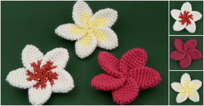 Crochet Hibiscus Flower Pattern Free : Crochet Hawaiian Plumeria Flowers How To Instructions