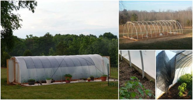 How To Build A Windproof Hoop Greenhouse