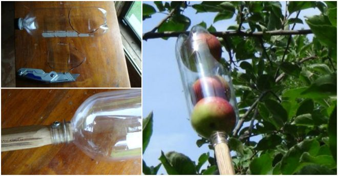 how-to-make-a-simple-fruit-picker