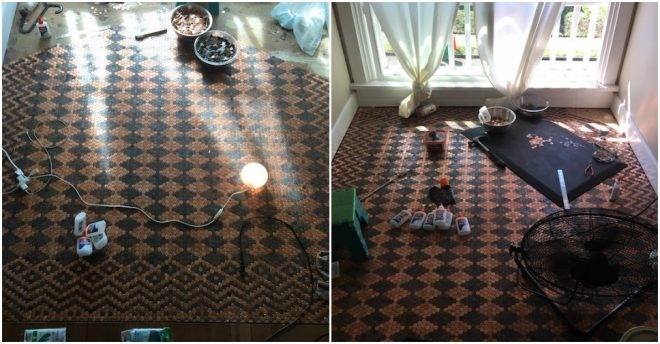 how-to-make-stunning-patterned-penny-floor-3