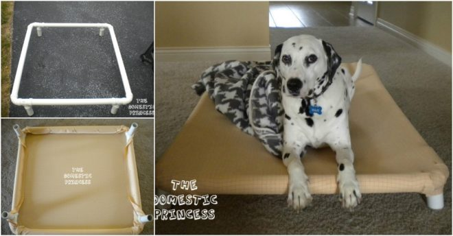 How To Build A Dog Bed With Pvc Pipes